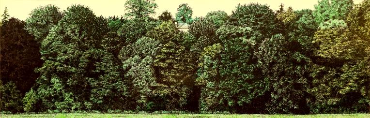 Kilkenny Castle Park - SOLD