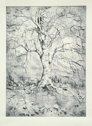 tree no.2