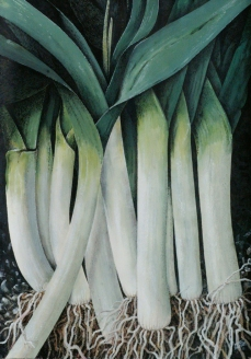 untitled leeks no.1 - sold
