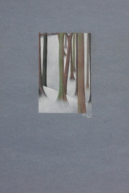 snow in the woods - SOLD